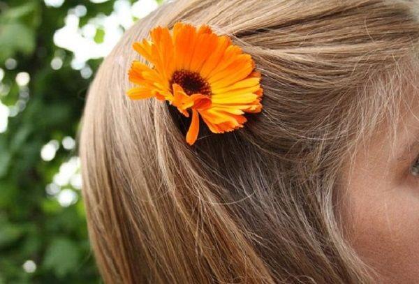 Отвар календулы для волос