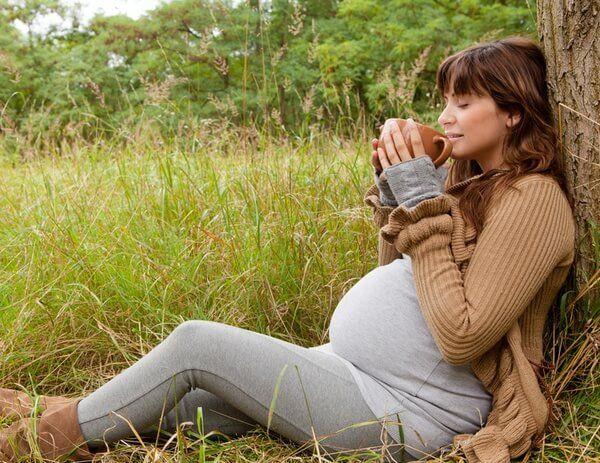 Можно ли иван-чай при беременности?