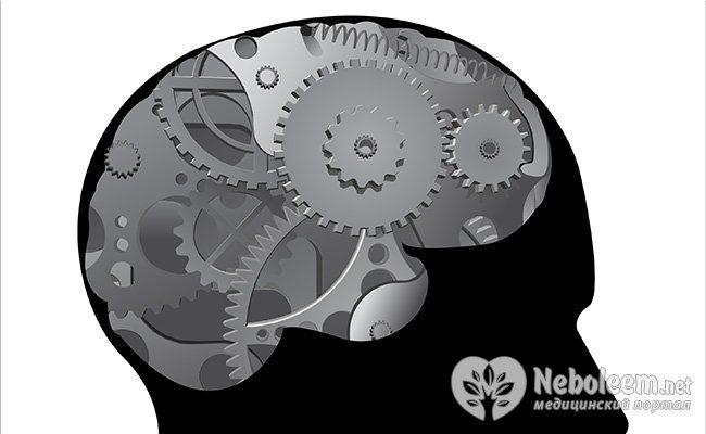 Нейробика: тренируем извилины