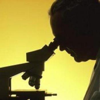 Вопросы и ответы на тему: микоплазмы