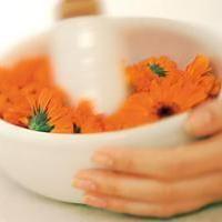 Воспаление яичников: симптомы, причины, лечение народными средствами